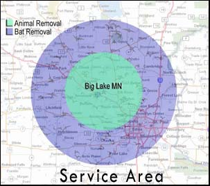 Service Area around Big Lake, Minnesota